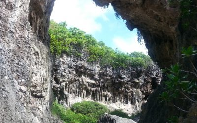 Constantly surprised on Niue